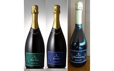 スパークリング・ワイン好きにはたまらない!2018年10~12月発送☆スパークリング・ワインの頒布会~全3回~