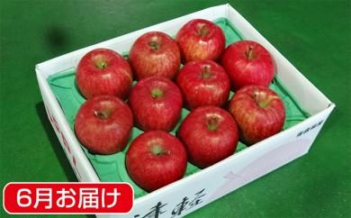 [№5731-0165]初夏に冷た~い 津軽平川市産 有袋ふじ約3kg※クレジットのみ