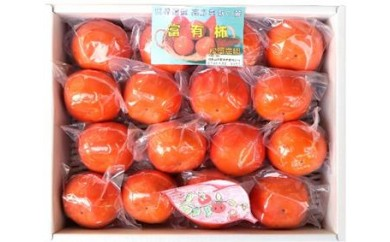 松岡農園 最高級 冷蔵富有柿 特撰L 16個入り