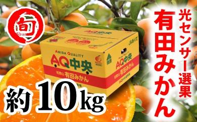 【秀選品】有田みかん 光センサー選果  10kg(S~L)旬の味覚市場