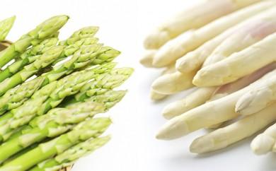 [№5832-0217]朝採り新鮮2種のアスパラ食べ比べセット約1kg