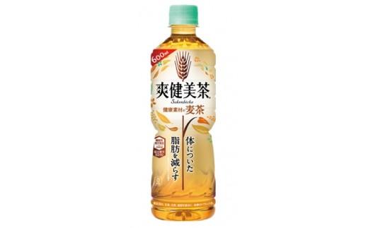 246 爽健美茶 麦茶 (600ml×24本)