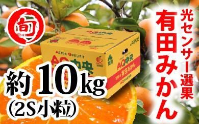 【秀選品】有田みかん 光センサー選果  10kg(小粒2S)旬の味覚市場