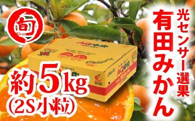 【秀選品】有田みかん 光センサー選果  5kg(小粒2S)旬の味覚市場