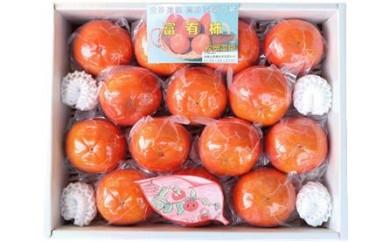 松岡農園 最高級 冷蔵富有柿 特撰2L 14個入り