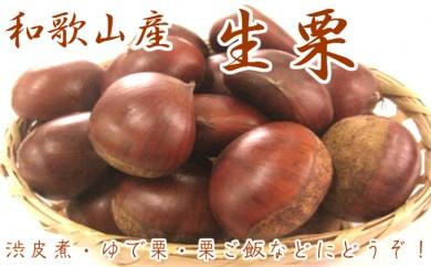 [№5910-0158]和歌山県産 生栗 2kg(Lサイズ以上)
