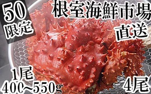 CA-14093 【北海道根室産】根室海鮮市場<直送>花咲ガニ400~550g×4尾