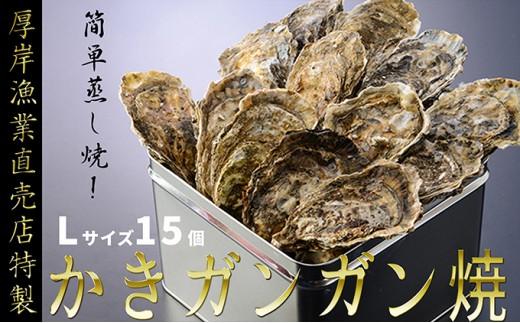[№5863-0149]【厚岸漁協直売店特製】かきガンガン焼Lセット