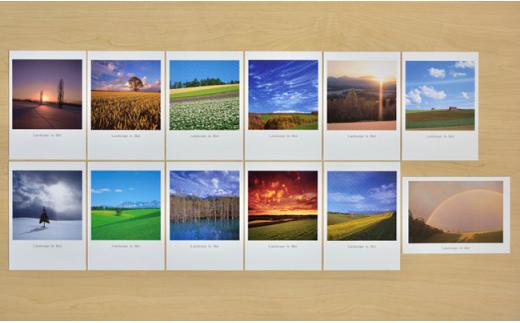 [003-05]写真家 阿部俊一 ポストカード
