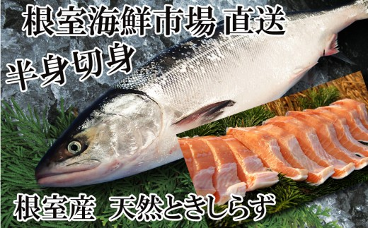 CA-22054 【北海道根室産】根室海鮮市場<直送>ときしらず半身切身