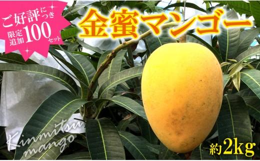 【100セット追加!】東村産(クガニ)金蜜マンゴー【2018年発送】