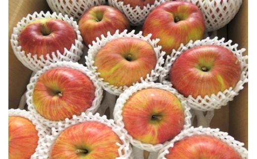 0075-110 りんご(葉とらずサンふじ・あいかの香り)5.5kg ご家庭用