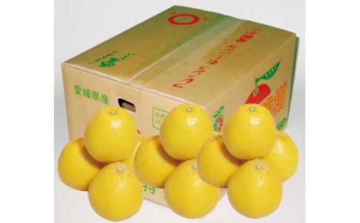 C8-33.JAにしうわ季節の柑橘(河内晩柑 約7.5㎏)