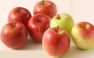 酸味と甘さが絶妙な林檎の食べ比べセット(さとう果樹園)