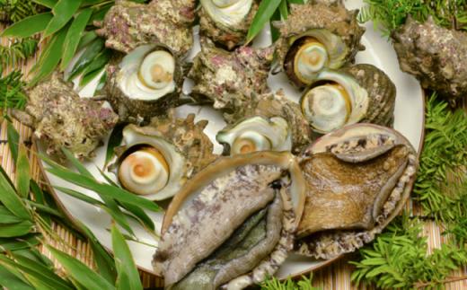 5-57 いずみや鮮魚店の活きサザエ・活きアワビセット
