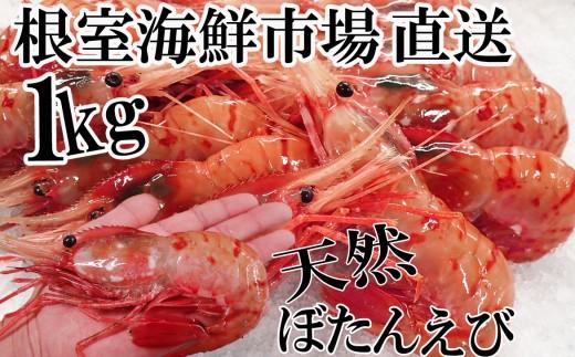 CA-22056 根室海鮮市場<直送>お刺身用ぼたんえび1kg(16~20尾)