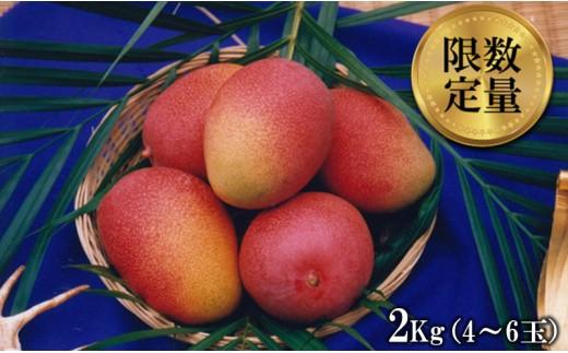 東村特産マンゴー園の完熟マンゴー 約2kg(4~6玉)【2018年発送】