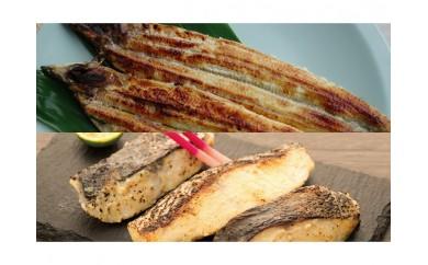 ◆炭火焼 国産うなぎ塩麹焼とうみの幸 発酵セット
