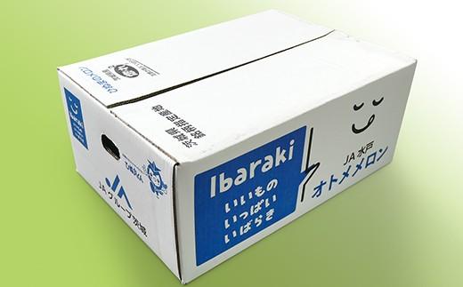 こちらのような専用箱に梱包してお届けします!