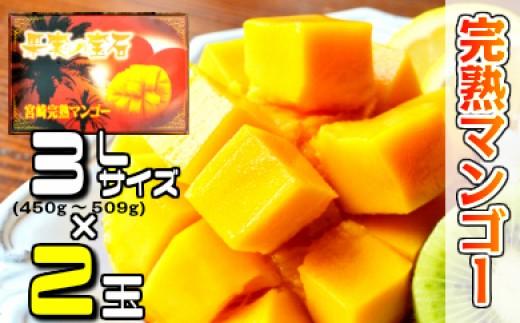 37-05「30年度」 果実の宝石マンゴー3L×2個入り