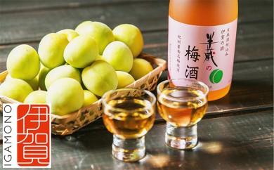 [№5831-0013]半蔵の梅酒