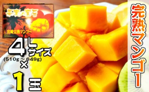37-06「30年度」 果実の宝石マンゴー4L×1個入り