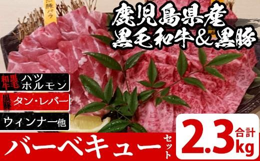 No.219 鹿児島県産黒毛和牛・黒豚バーベキューセット ホルモンやハツ、バラエティ盛もついて全10品!総量2.3kg