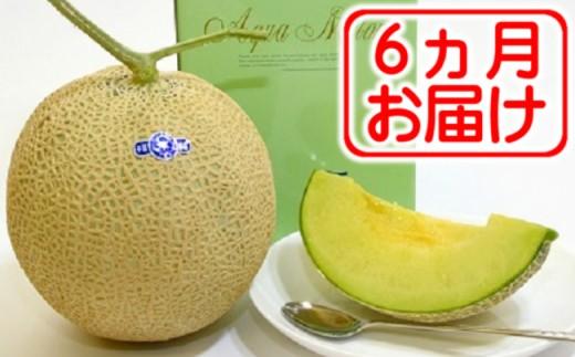 10-24 【定期便】吉田温室メロン農園の千葉アクアメロン2個×6回発送