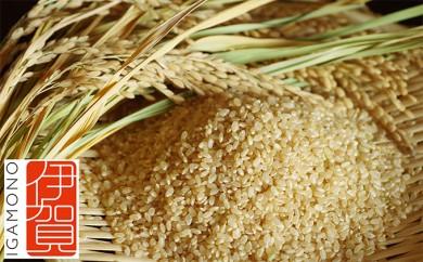 [№5831-0041]伊賀米 玄米20kg