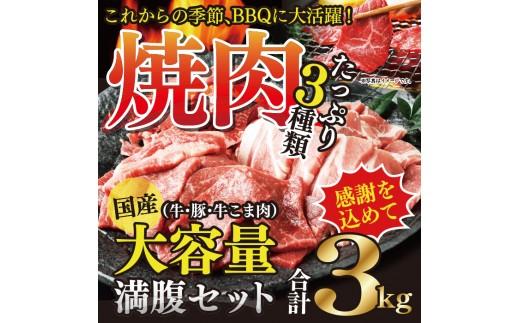 116_hn <国産牛・豚たっぷり3kg>平成30年6末迄に順次出荷