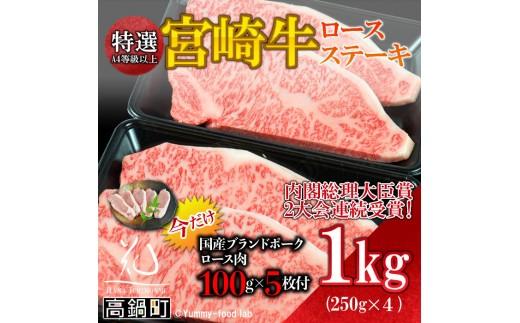 057_hn_x3 <特選宮崎牛ロースステーキ 1kg+ブランドポーク100g×5枚>平成30年6月末迄に順次出荷