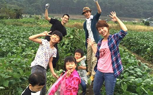 C)幻の大豆「小糸在来®」枝豆・大豆のオーナー権