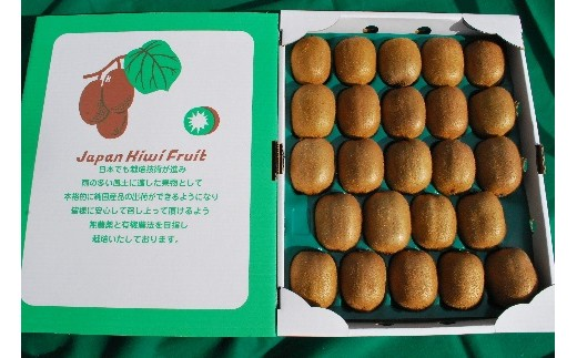 E09:【減農薬】国産キウイフルーツ 3.5kg(平成30年12月16日~平成31年1月15日 発送分)