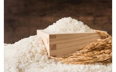 北山農場 特別栽培米 アミノサン米 「ゆめぴりか5㎏」