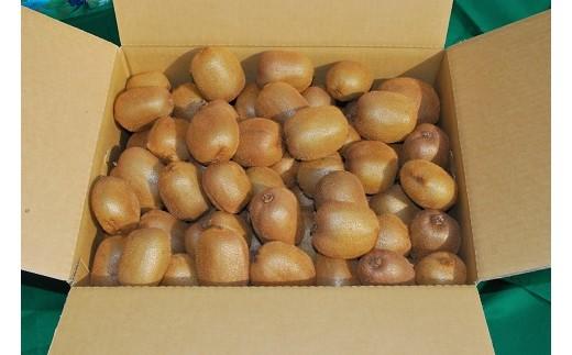 E12:【減農薬】国産キウイフルーツ 5kg 未追熟バラ詰め(平成30年12月16日~平成31年1月15日 発送分)