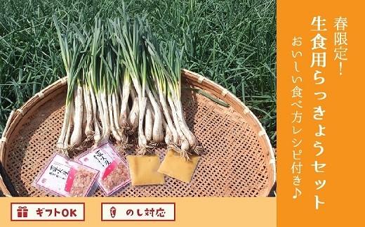017-06 春限定!生食用砂丘らっきょうセット おいしい食べ方レシピ付き♪
