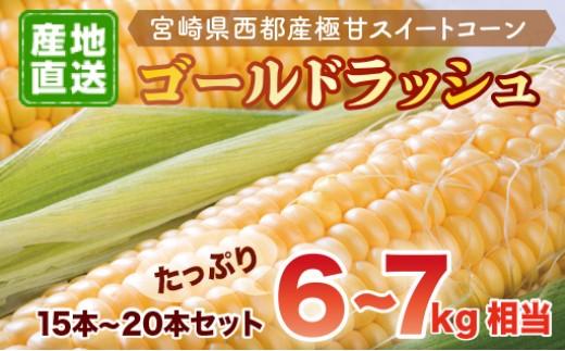 0.8-28 河野農園 スイートコーン ゴールドラッシュ 【先行予約】