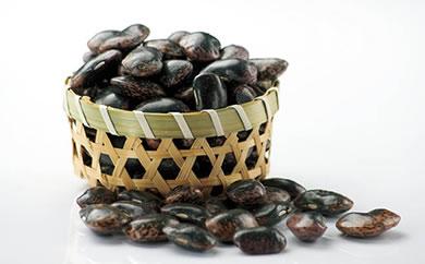 エコファーマー認定農場  「恵みや」 煮豆に最適 紫花豆約1kg