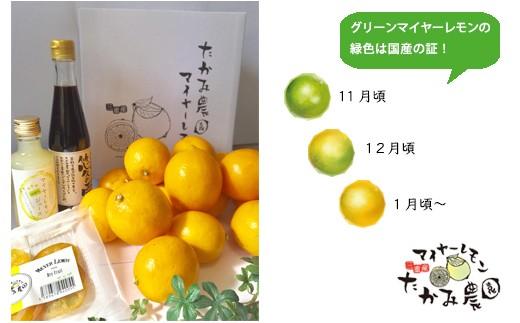 A15-Gたかみ農園マイヤーレモンセット