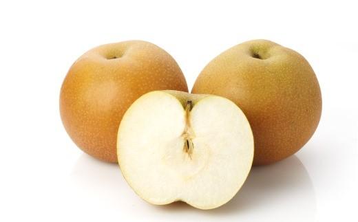 豊水(梨) 10kg
