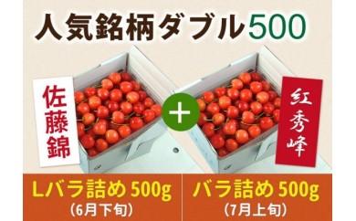 AT25 さくらんぼ人気銘柄ダブル500(佐藤錦&紅秀峰)