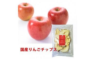 国産りんごチップス20g ドライフルーツ