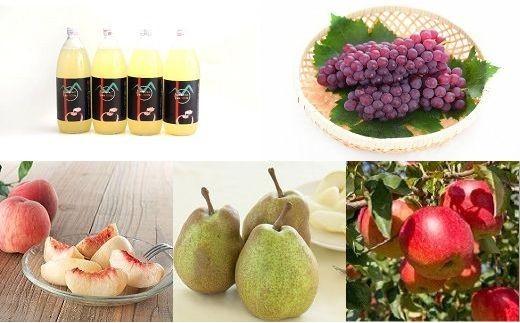 0103-101 果物の郷 旬のフルーツ定期便パート1【頒布会】