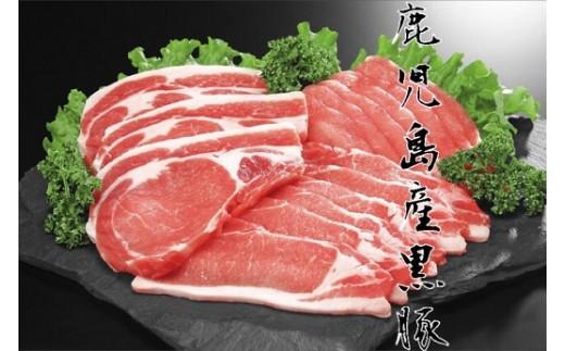 【A06017】鹿児島県産 極上黒豚ロース&黒豚ギョーザセット