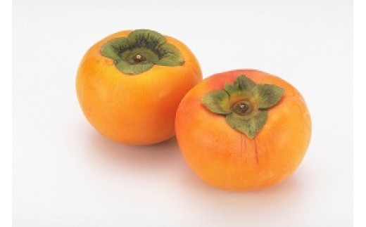 (443)太秋柿