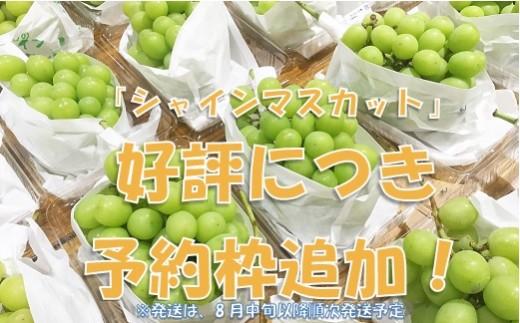 山梨県産 シャインマスカット 2kg相当 Presents by Katerial