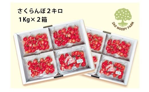 0062-102 さくらんぼ(佐藤錦か紅秀峰)2kg ご家庭用