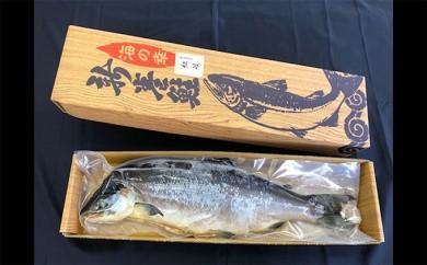[№4630-0595]メジカ紅鮭山漬寒風干し姿約2kg
