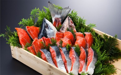 [№4630-0582]特製・塩紅鮭姿切身約2kg