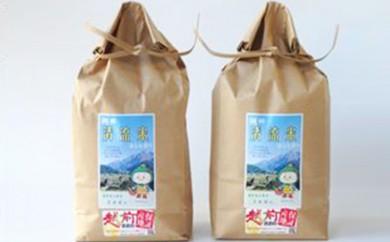 [№5884-0181]棚田清流米コシヒカリ 5kg×2袋